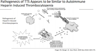ACIP: TTS mechanism similar to autoimmune heparin induced thrombocytopenia